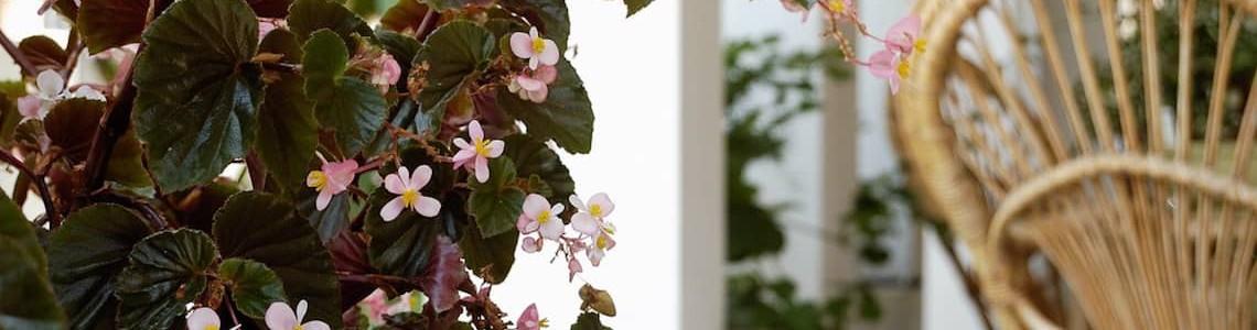 veranda piano terra villa la rosina fontane bianche